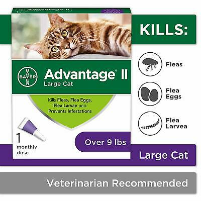 Bayer Animal Health Advantage II Flea Prevention for Large Cats, Over 9 lbs
