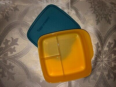 Tupperware Lunch-It Divided Dish Lunch Container Orange