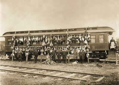 Antique Photo ... Railway Hunting Car , Goose Hunting ... Photo Print 5x7