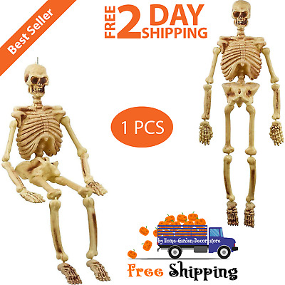 5' Life Size Jointed Skeleton Halloween Spooky Prop Haunted House Skeleton Decor