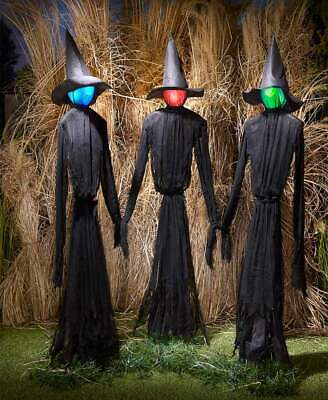 Set of 3 Lighted Witches Color Changing Life Size Halloween Prop Decor 60""