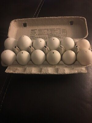 1 Dozen Blown Duck Eggs For Christmas And Easter Crafts