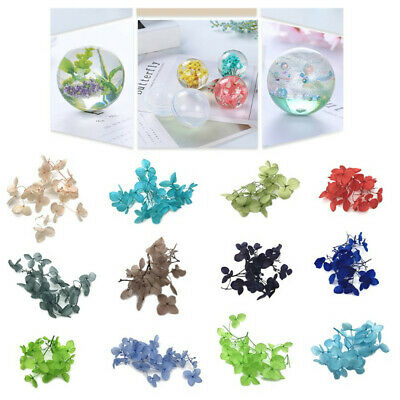 1 Box Dry Flower Epoxy Resin Crafts Filling Dried Flowers DIY Jewelry Making ~