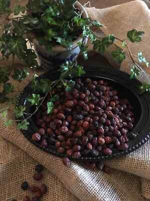PINEY WOODS Potpourri// Botanicals Incredible Lasting Fragrance!! 2 Cups