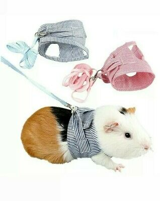 Pet Rabbit Ferrets Harness Guinea Pig Lead Leash Adjustable Traction Rope Small