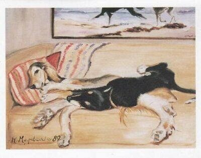 New Salukis on Couch Notecard Set 6 Notecards Envelopes By Ruth Maystead