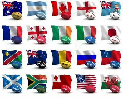 Rugby World Cup 2019 All 20 Team Flags & Fabric Bunting ** Speedy Delivery **