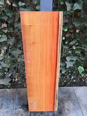 "Pau Rosa 2"" Lumber/Boards - /Exotic Wood/Exotic Hardwoods 31""x 9.5"""