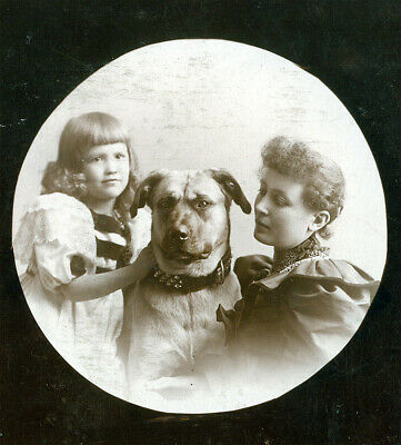 the women and the dog Grinell Iowa pet canine closeup