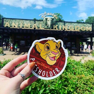 Authentic Disney World Animal Kingdom Simba Annual Passholder Magnet 2019