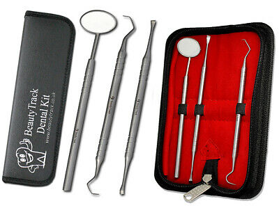 Stainless Steel Sickle Scaler H6/H7 Dentist Pick Tool Pro Dental Hand Instrument