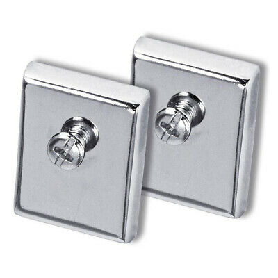 Esselte 30018 VerticalMate Large Magnets PAIR SILVER