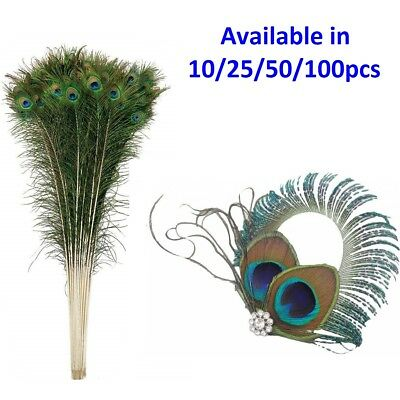 Peacock Feathers Tail Natural Real Wedding Party Decoration Art Craft 30-35 inch