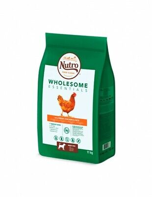 Nutro Wholesome adult med. pollo