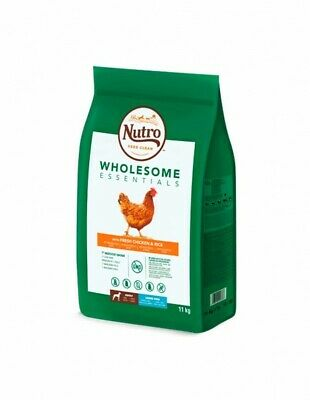 Nutro Wholesome Adult raza grande pollo