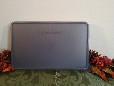 Tupperware Snack-Stor Rectangle 7 X 11 keeper deli meats NEW Gray and Sheer