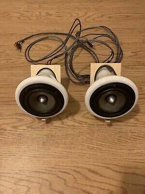 Joey Roth Ceramic Speakers, Working With Slight Damage
