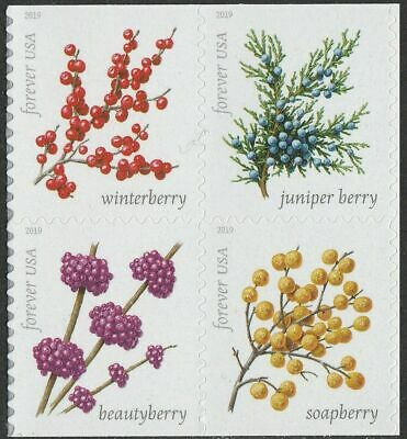 NEW! US STAMP 5415-5418 Winter Berries, 1 Block OF 4 STAMPS SET , MINT NH