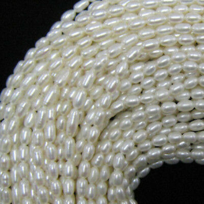 "5~6mm white freshwater pearl rice beads 14""strand"