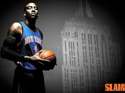 Amare Stoudemire Empire State Building Wall Print POSTER US
