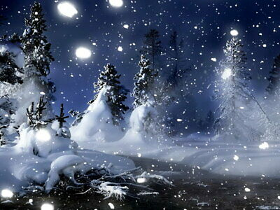 Snowflakes Winter Night Nature Art Wall Print POSTER US