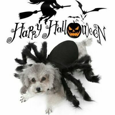 Halloween Spider Pet Costume Cool Cosplay Clothes for Cat Dog Puppy Funny Party