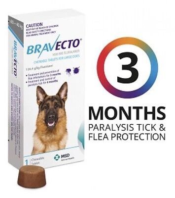 Bravecto Blue Pet Flea & Tick Control Chewable Tablet For Large Dogs 20-40kg