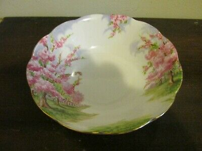 Royal Albert Bone China England Blossom Time Cereal Bowl 6""