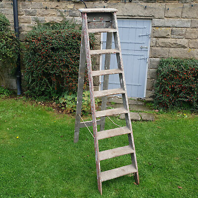 Vintage Early C20th Large 9 Step Wooden Step Ladders