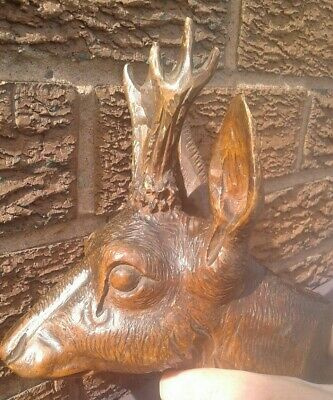 Antique Black Forest Stag/Deer/Fawn Head ( see description )