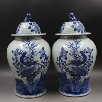 A Pair Infrequent Chinese Qing Blue White Porcelain Flowers Bird Jar
