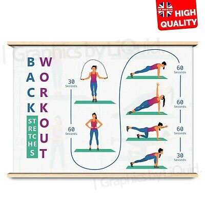 Back Stretching Exercise Training Poster Art Print     A4 A3 A2 A1  