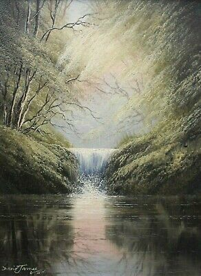 David James (b. 1944) - Original Oil Painting - A Woodland Waterfall.