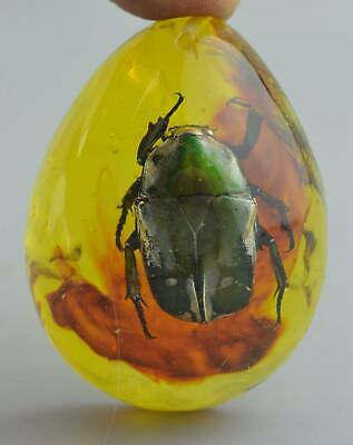 Collectable Handwork Tibet Amber Inner Inlay Beauty Insect Auspicious Pendant