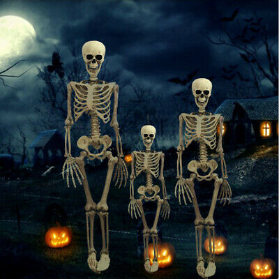 Halloween Poseable Full Life Size Human Skeleton Halloween Decoration Party Prop