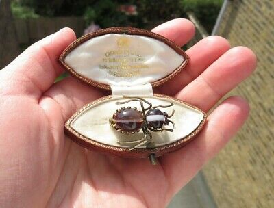Antique 1900 Pinchbeck Natural Banded Agate Bug Insect Brooch