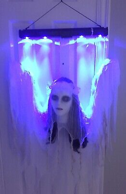 Halloween Haunted Hanging Light Up Spirit Ghost Animated Sound Holiday Living
