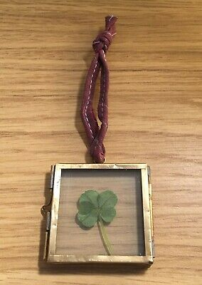 Genuine Four Leaf Clover In Antique Brass Coloured Frame Good Luck Gift