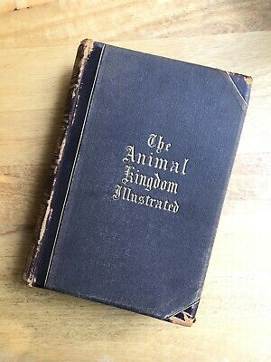 The Animal Kingdom Illustrated Vol 1 And 2