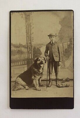 1880's Cabinet Card Photo Of  Boy And His Dog In Bancroft, Iowa - Merrifield