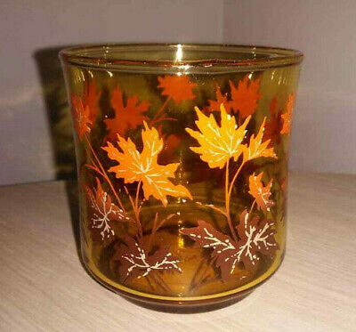 2x Vintage Colourful Drinking Glasses / Tumblers ~ Retro Fall Autumn Leaves