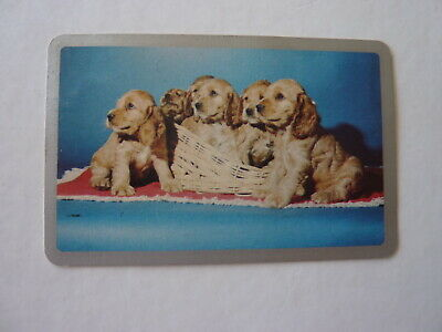 Silver 1970's Blank Puppies Dogs Single GENUINE VINTAGE Playing Swap Card AK *5