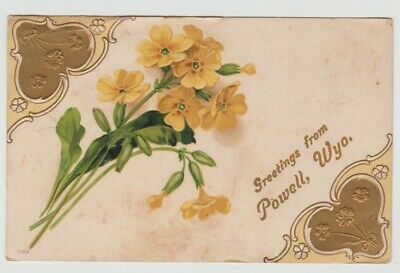 Wyoming Greetings From Powell, Wyo. WY Vintage 1911 Postcard