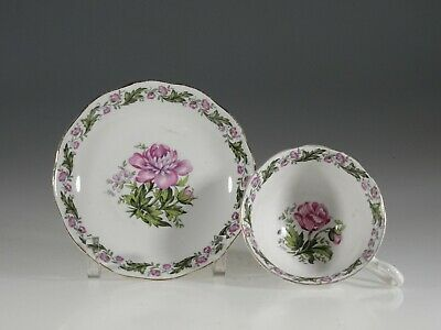 Royal Albert 'Cotswold' Avon Shape Tea Cup and Saucer, England