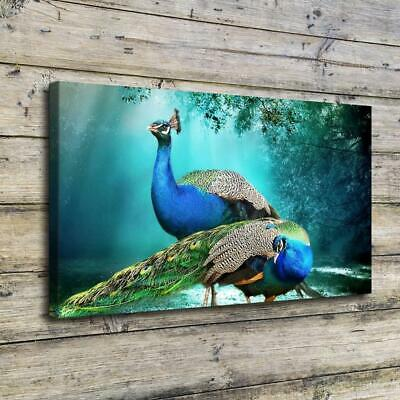 "12""x22""Beautiful Peacock HD Canvas Prints Home Decor Picture Wall Art Poster"