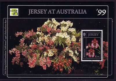 1999 Jersey. Orchids  MS 898 MNH
