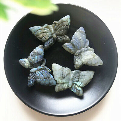 Natural Labradorite Butterfly Handmade Carved Crystal Animal Gems Healing Gifts
