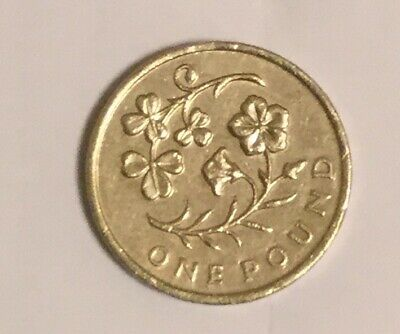 Old £1 Coin - Floral Emblem Design - Ireland (2014) Shamrock & Flax - Circulated