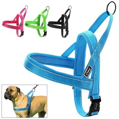 For Small Large Dog Reflective Stitching Walk Out Vest Collar Leads Harness