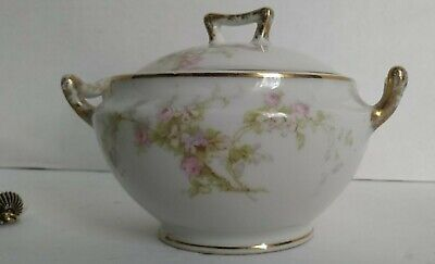Antique Limoges Elite France Sugar Bowl with Lid Circa 1900 to 1914